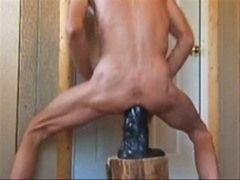 Horse dick dildos, fist-fucking, piss, and additionally extreme double