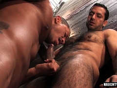 Hairy gay anal and cumshot