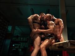 muscular three-way interracial