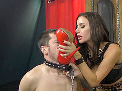 Mean basement - Gia DiMarco